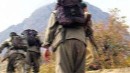 7 terörist ikna yolu ile teslim oldu