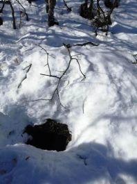 Bitlis'te teröristlerin kullandığı sığınak tespit edildi