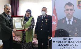 Gara Şehidinin ailesine Şehadet belgesi verildi