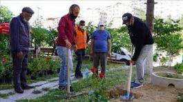 Bingöl Elazığ Kara yolu  33 Şehit için bahçesine 33 gül fidanı dikti