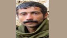 Gri listede aranan Terörist Mardin'de öldürüldü