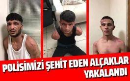 İstanbul'da Polis Şehit eden alcaklar yakalandı