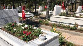 Kırşehir'de Şehitliğe 600 kırmızı beyaz gülfidanı dikildi