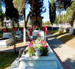 Körfez'de şehit mezarları 30 Ağustos'ta çiçeklendi