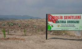 Mersin de tahrip edilen ormanlık İdlib Şehitleri Hatıra Ormanı oldu