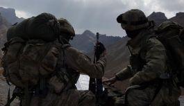 Pençe-3 Harekâtı kapsamında  2 Terörist Öldürüldü