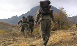 Pkk'lılar teslim olsun diye Askerimiz 7 maddelik bildiri dağıtıyor
