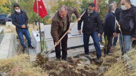 Sason'da Şehit mezarlığına fidan dikildi