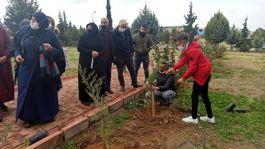 Şehir Mezarlığı içerisinde bulunan Şehitlikte fidan dikimi yapıldı