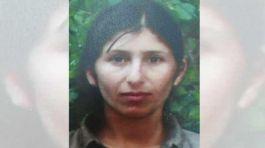 Şehitlerin cenazesini kaçıran terörist Suriye'de yakalandı