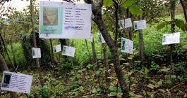Şehitlerin isimlerinin yaşatıldığı meyve bahçesi