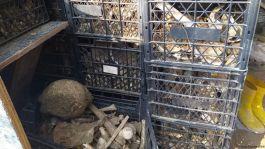 Şehitlerin kemikleri kepçe ile tahrip edildi iddiası ve Valilik açıklaması