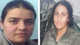 Şırnak'ta İkisi gri listede 5 terörist öldürüldü