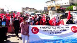 Şırnak'ta kadınlar eylemle Hdp ve Pkk yı kınadı(Video)