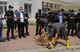 Şırnak'ta şehitler için kurban kesildi ve mevlit okutuldu