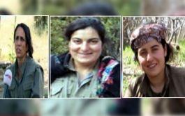 Sözde üst düzey kadın komutan 3 terörist öldürüldü