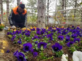 Sungurlu'da şehitlik çiçeklerle donatıldı