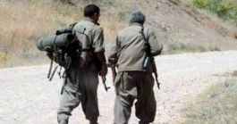 Suriye'den kacan iki Terörist teslim oldu